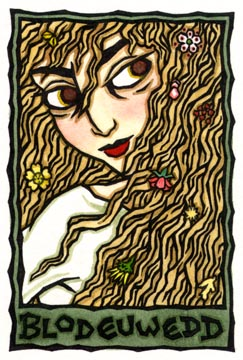 Blodeuwedd, Welsh Spring and Owl Goddess